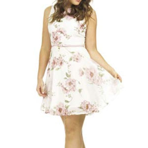 NWT Ivory Floral print chiffon dress
